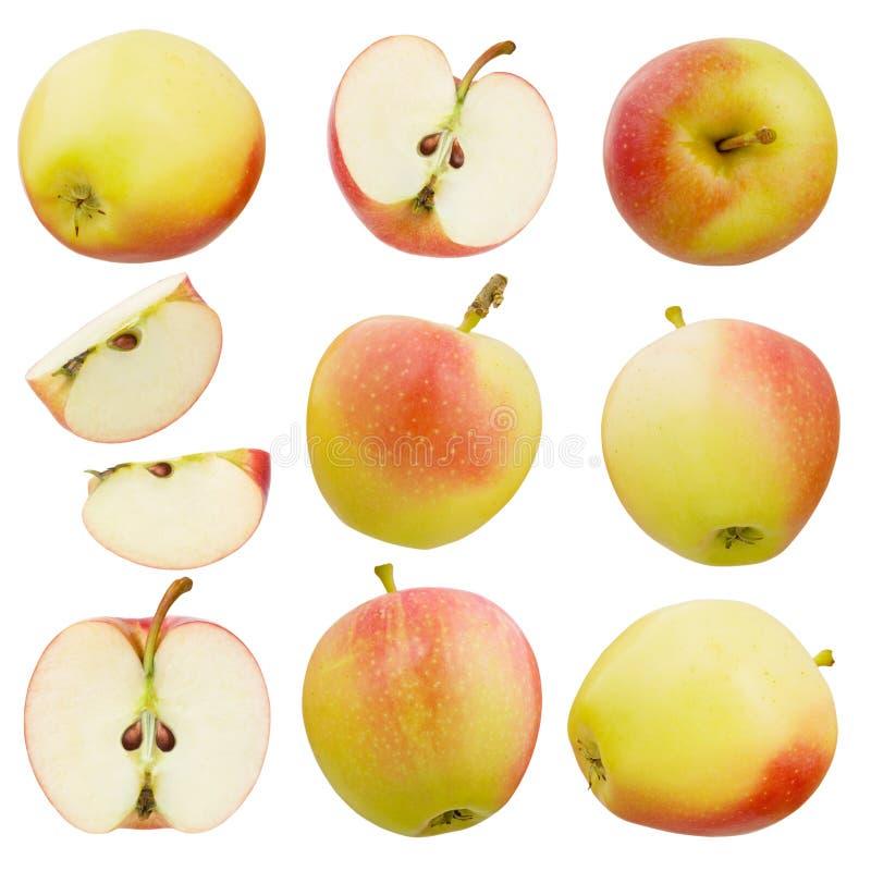 r 套与在白色背景隔绝的被削减的水多的切片的红色和黄色成熟整个苹果,细节的汇集 免版税库存照片