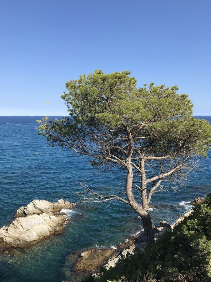 r 布拉瓦海岸,蓝色海,蓝色海湾 免版税库存图片