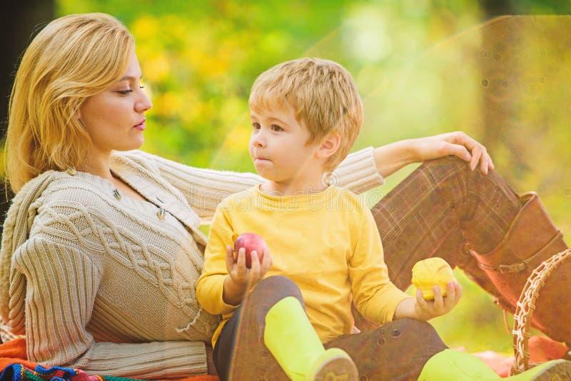 r 幸福家庭天 r r r r 有母亲的愉快的儿子放松  库存图片
