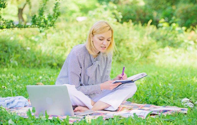 r 户外企业夫人自由职业者的工作 E 有膝上型计算机的妇女 库存照片