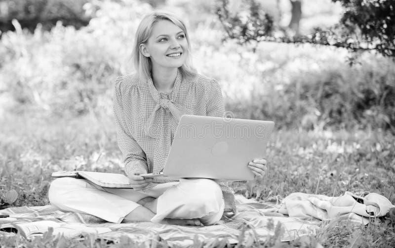 r 户外企业夫人自由职业者的工作 E 有膝上型计算机的妇女 免版税库存照片