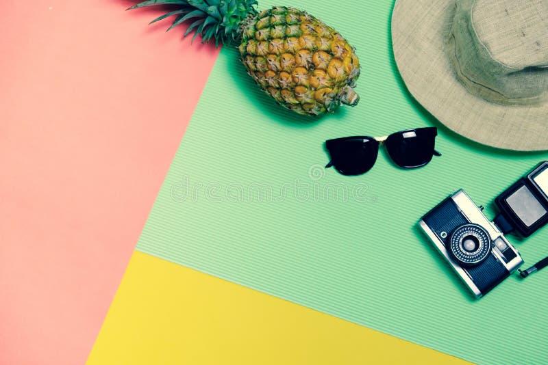r 时刻放松和旅行用在淡色背景的太阳镜、照相机、帽子和菠萝果子 葡萄酒设计样式 库存照片