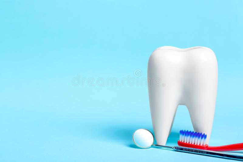 r 有牙刷的牙齿镜子在浅兰的背景的健康白色牙模型附近 您的自由空间 免版税库存图片