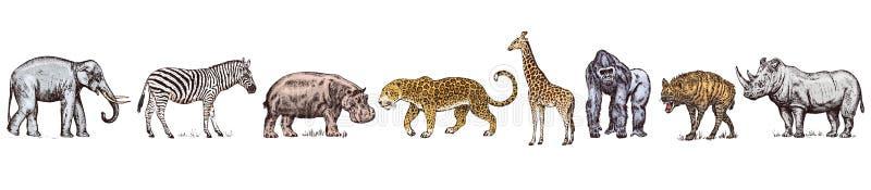 r 犀牛大象河马豹子野生斑马 被刻记的手拉的葡萄酒老单色徒步旅行队 向量例证