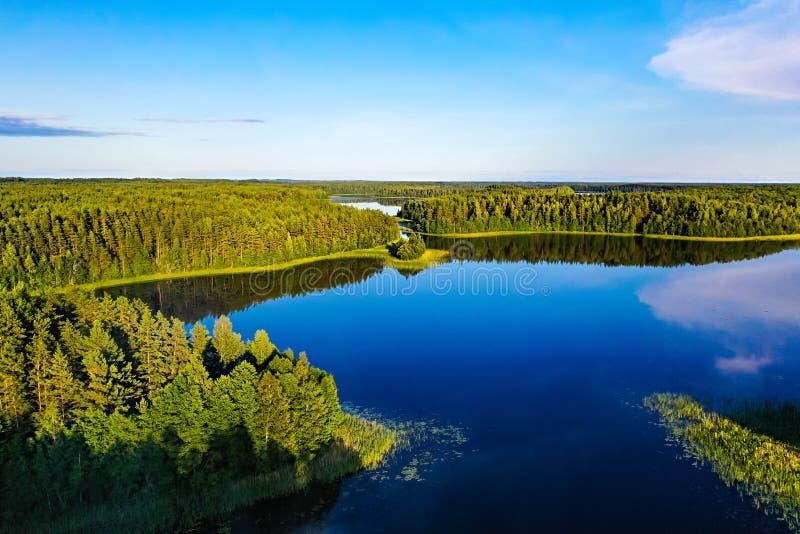 r 美丽的湖和绿色森林在天空蔚蓝,空中风景下 免版税图库摄影