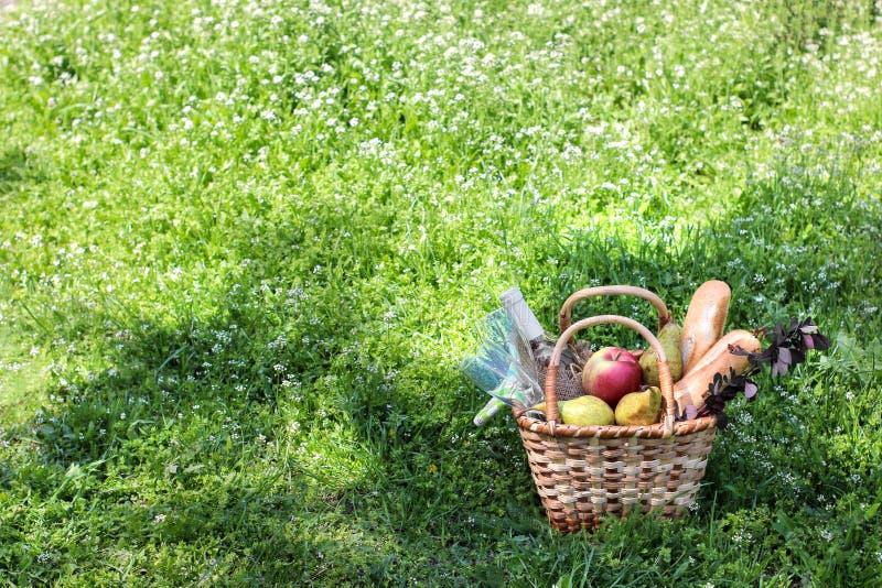 ?? r 野餐篮子用酒果子和在厚实的绿草的其他产品 t 免版税库存图片