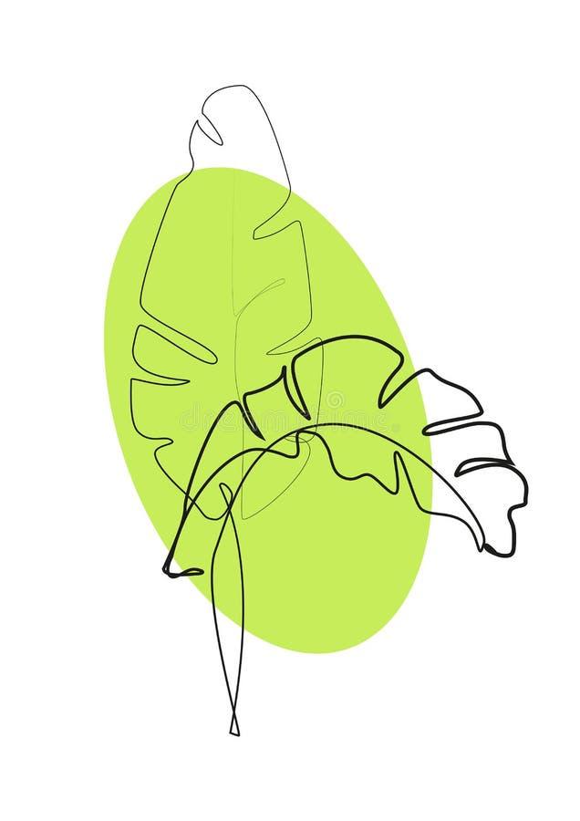 r 香蕉叶子等高图画  库存例证