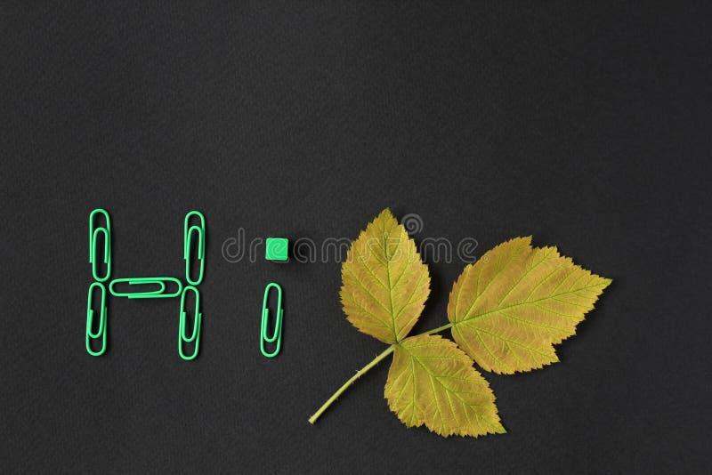 r 黄色和绿色秋天叶子和纸夹在黑背景的 平的位置,顶视图,拷贝 免版税图库摄影