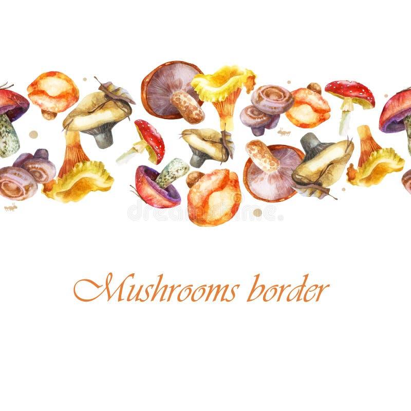 r 黄蘑菇蘑菇 橙色蘑菇 皇族释放例证
