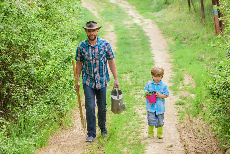 r Asdag Het planten van Bomen r Weinig helper in tuin planting stock foto