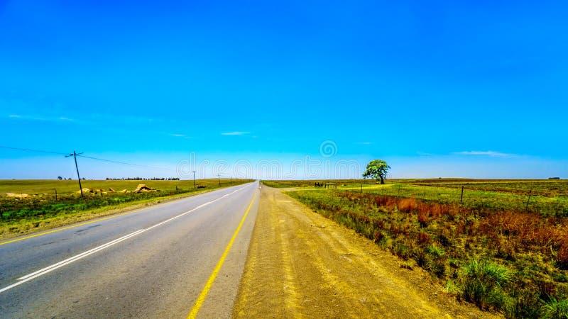 R39 carretera, uno de los muchos caminos rectos en Suráfrica, entre las ciudades Ermelo y Standarton en Mpumalanga imagen de archivo libre de regalías