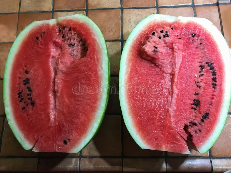 r?d vattenmelon I afrikanska områden är det en riktig källa av vatten och mat arkivfoto