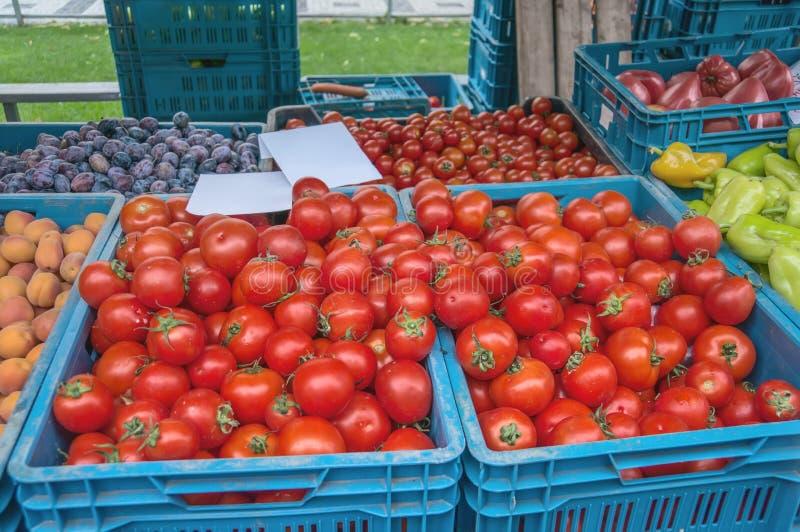 R?da mogna tomater s?ljs p? bondens marknad p? en h?stdag i bl?a plast- askar med andra gr?nsaker marknad f?r bonde` s arkivbild