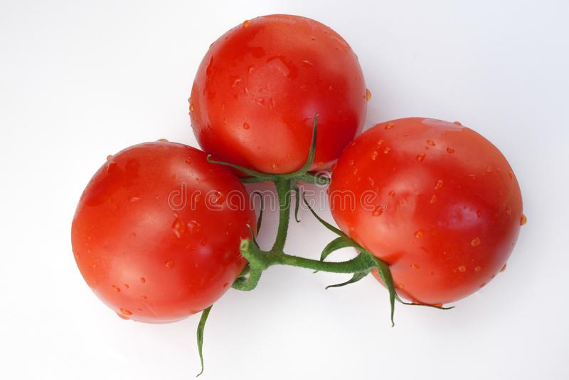 r?da mogna tre tomater arkivbilder