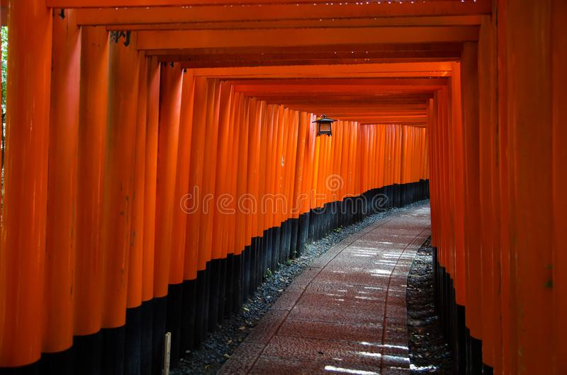 R?da Tori Gate p? den Fushimi Inari relikskrin i Kyoto, Japan royaltyfria bilder