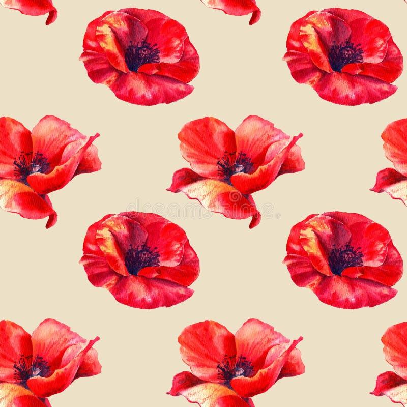 r?da vallmo p? en beige bakgrund Blom- s?ml?s modell med stora ljusa blommor Sommarakvarellillustration för stock illustrationer