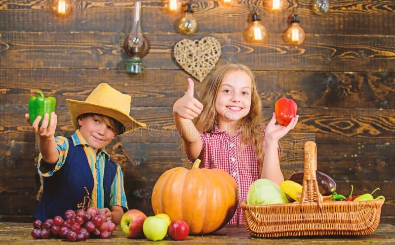 r E Овощи мальчика девушки фермеров детей жмут обрабатывать землю стоковое изображение