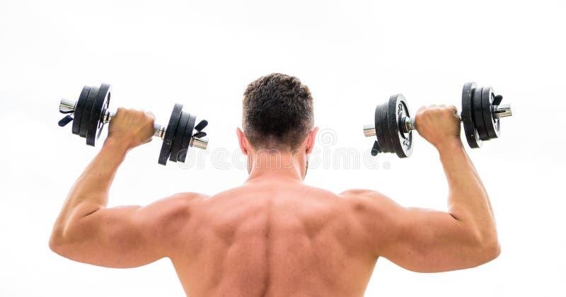 r Hombre trasero muscular que ejercita por mañana con el barbell Carrocer?a atl?tica Gimnasio de la pesa de gimnasia foto de archivo libre de regalías