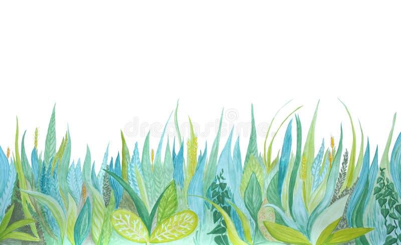 R?ka rysuj?ca akwareli botaniczna ilustracja Błękitna i zielona trawa ilustracji