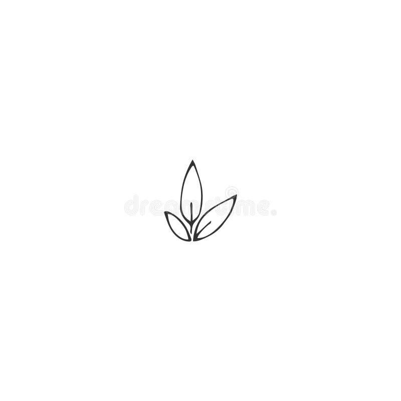 R?ka rysuj?ca odosobniona ilustracja Wektoru logo ogrodowy element, flanca z li??mi ilustracji