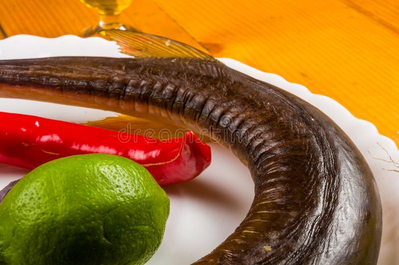 r?kt garfish med limefrukt, basilika, salladsl?kar, chili, norichiper, kryddor, olivolja i en vit keramisk matr?tt, p? en tr?tabe royaltyfri foto