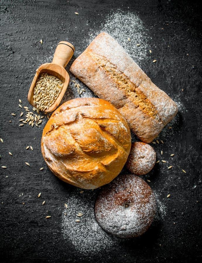R??norodni typy chleb z adr? zdjęcie royalty free