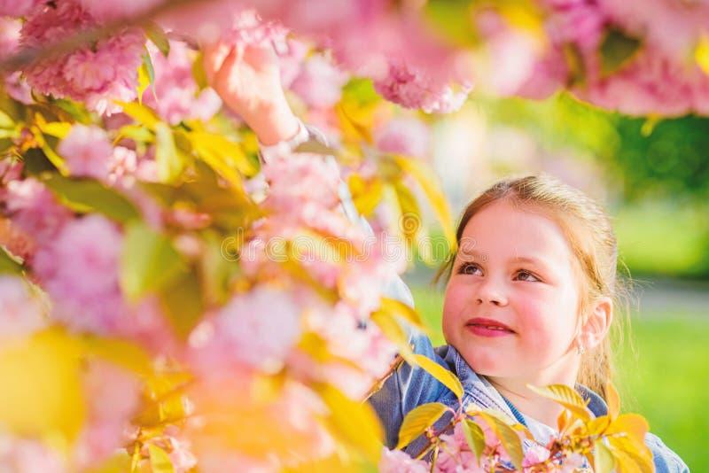 r o 开花气味,过敏 春天花绽放的小女孩 Skincare 库存图片