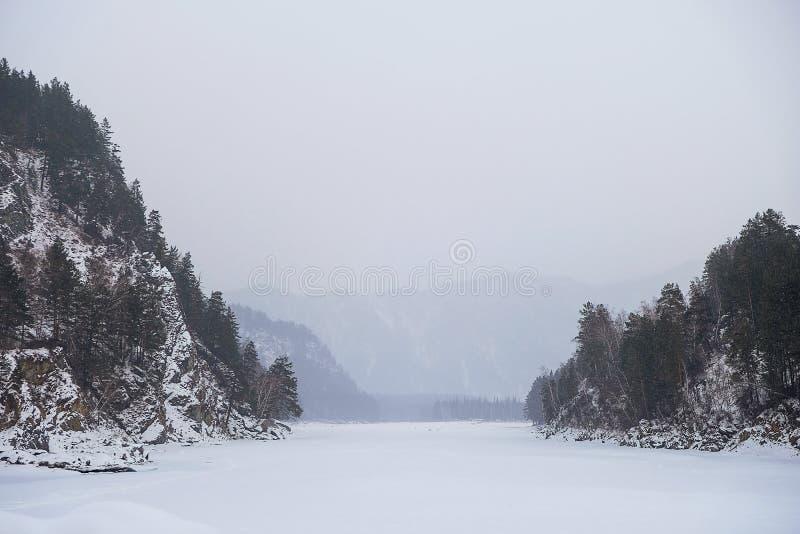 R?o brumoso de la monta?a azul del invierno. Paisaje id?lico congelado de los ?rboles de pino de la nieve. Monta?as visi?n natural fotos de archivo libres de regalías