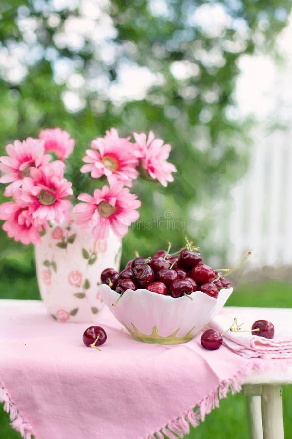 Różowy Petaled kwiat Obok bielu i zieleń Rzucamy kulą Pełno wiśnia obraz royalty free
