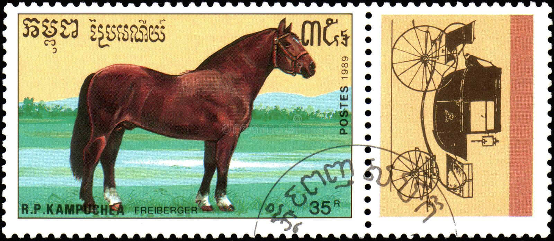 r P CAMBODJA - CIRCA 1989: Een zegel in R wordt gedrukt dat P Cambodja toont een Freiberger-paard, reeksrassen paarden royalty-vrije stock fotografie