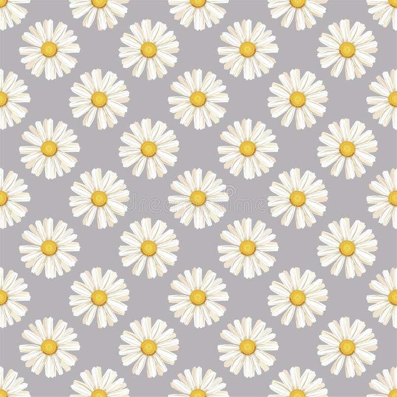 r seamless Άσπρες μαργαρίτες μαργαρίτα, λουλούδι ελεύθερη απεικόνιση δικαιώματος