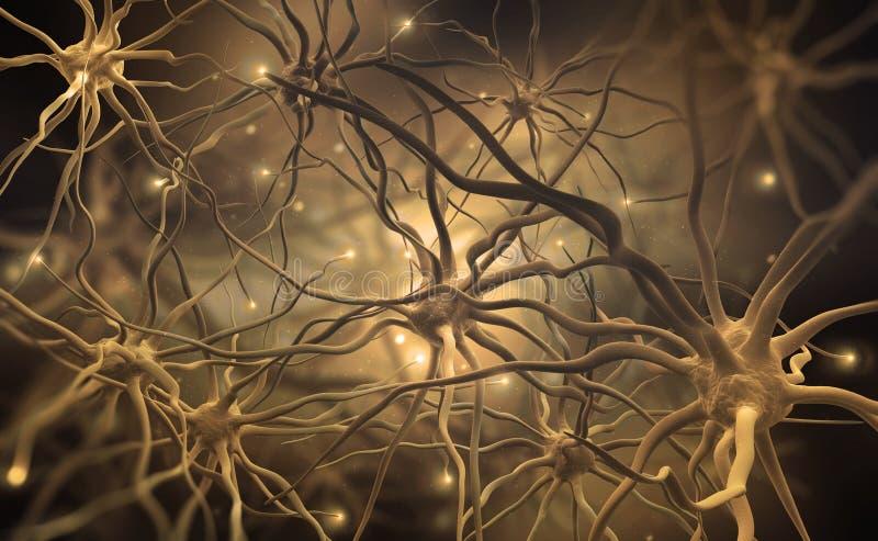 R?seaux neurologiques de l'esprit humain illustration 3d des centres de nerf abstraits image libre de droits