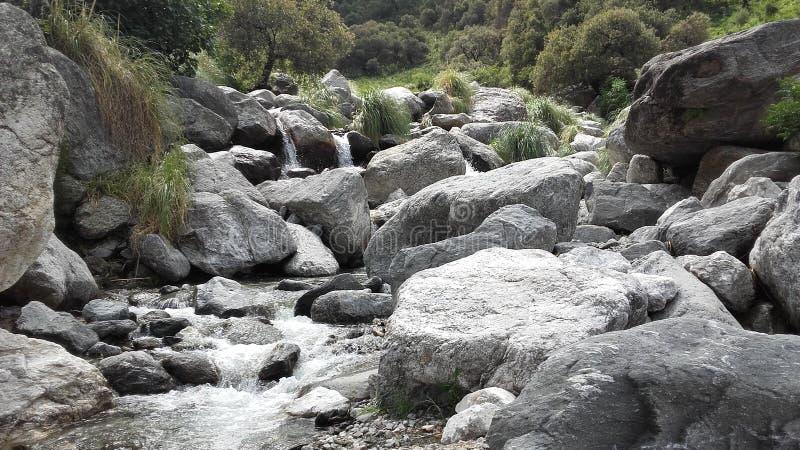 R?servation naturelle dans Merlo, San Luis Argentina photographie stock libre de droits