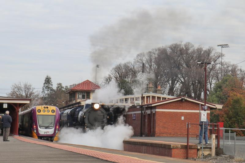 R 711 Steamrail parowy silnik i transportu publicznego V/locity pociąg krzyżujemy ścieżki przy Castlemaine stacją kolejową obrazy royalty free