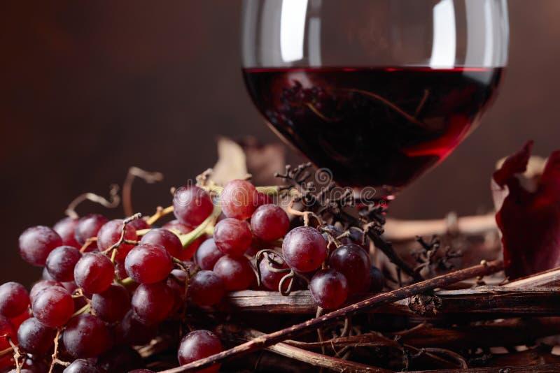 R?tt vin och nya druvor med torkat upp vinrankasidor royaltyfria bilder