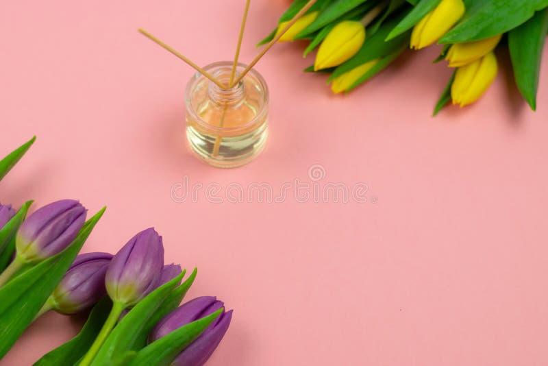 R?ucherst?bchen und Tulpen auf rosa Hintergrund stockfotografie