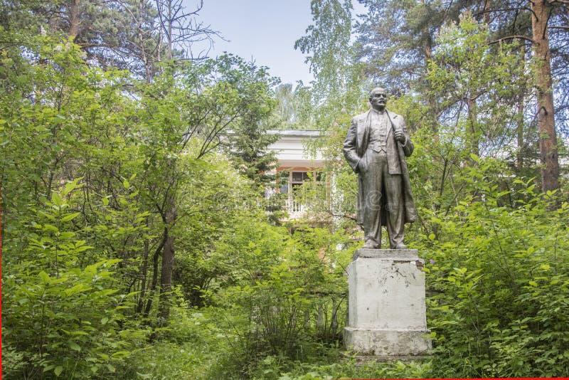 r yekaterinburg Γλυπτό Λένιν στο δάσος θερινών πεύκων στοκ φωτογραφία με δικαίωμα ελεύθερης χρήσης