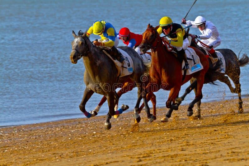 Raça de cavalo em Sanlucar de Barrameda, Spain imagem de stock