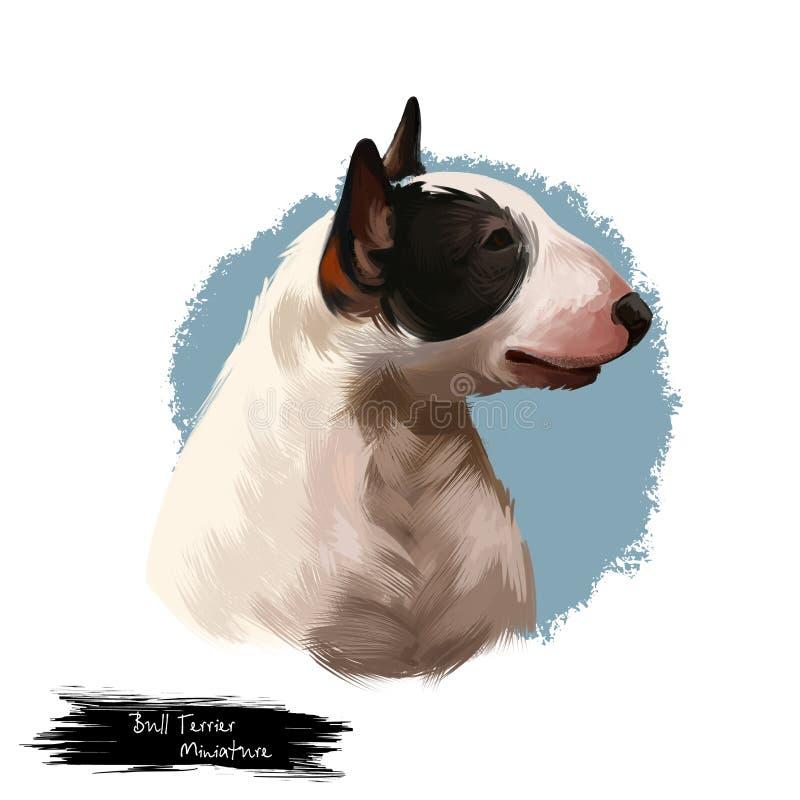 Raça diminuta do cão de bull terrier isolada na ilustração digital da arte do fundo branco Cão da cabeça da forma do ovo, retrato ilustração royalty free