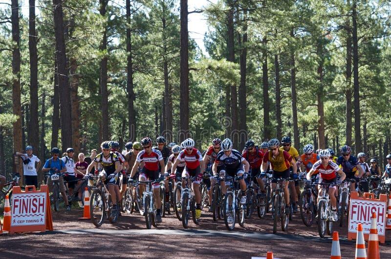 Raça do Mountain bike imagens de stock