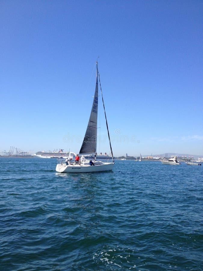 Raça do veleiro do yacht club de Long Beach foto de stock