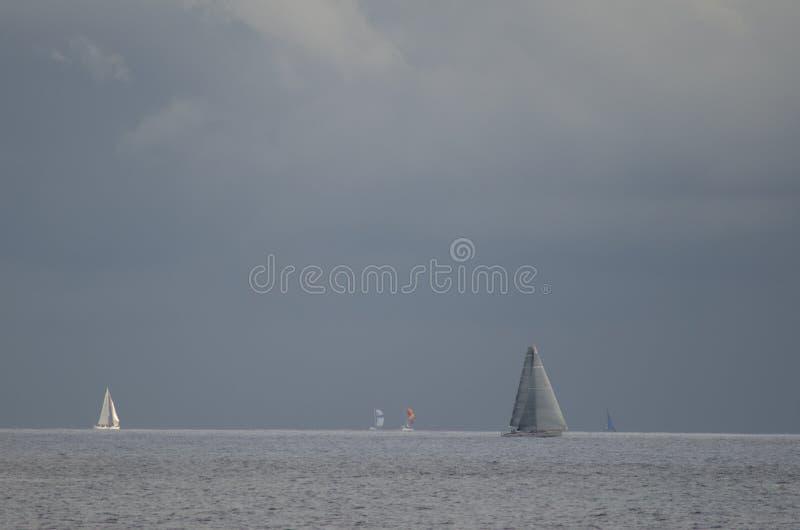 Raça transatlântica da ilha de Gran Canaria foto de stock royalty free
