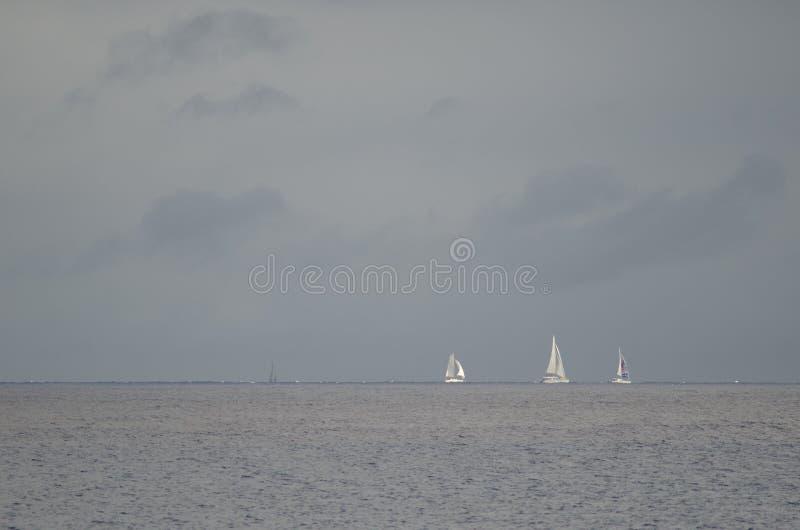 Raça transatlântica da ilha de Gran Canaria imagens de stock royalty free