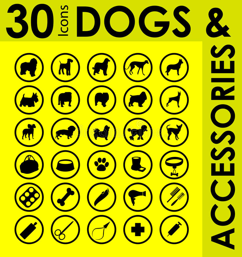 Raças diferentes de acessórios dos cães ilustração do vetor
