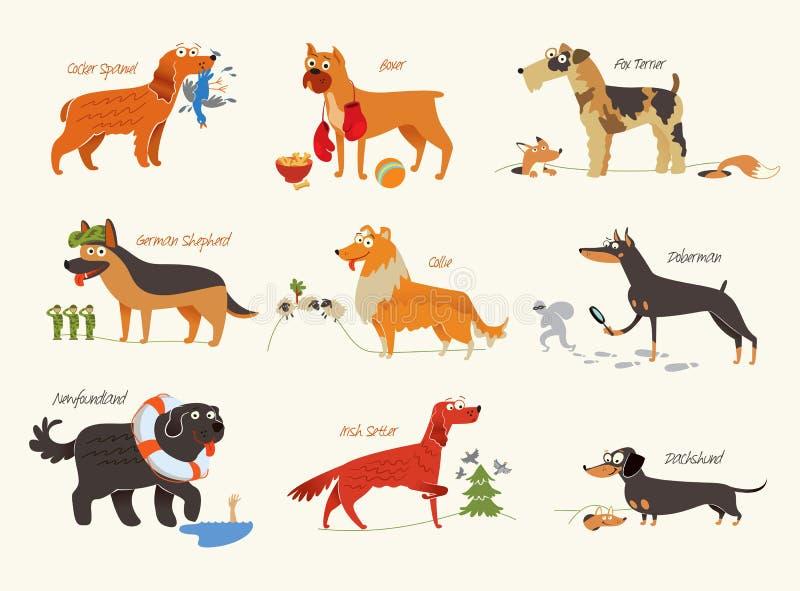 Raças do cão Cães de funcionamento ilustração royalty free