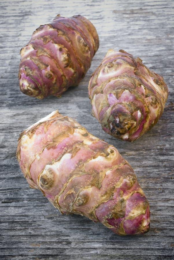 Raíz de Topinambur (tuberosus del Helianthus) foto de archivo libre de regalías