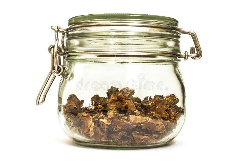 Ra?z seca cortada del rosea de Rhodiola en un tarro de cristal en fondo blanco natural foto de archivo