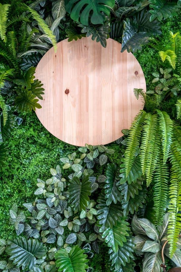 Raad van het cirkel de houten teken op de verticale groene achtergrond van de bladerenmuur royalty-vrije stock afbeeldingen