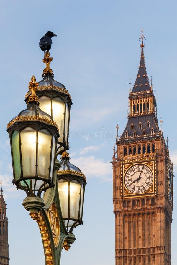Raaf op lampost bij Huizen van het Parlement in vroege de winterochtend stock afbeeldingen