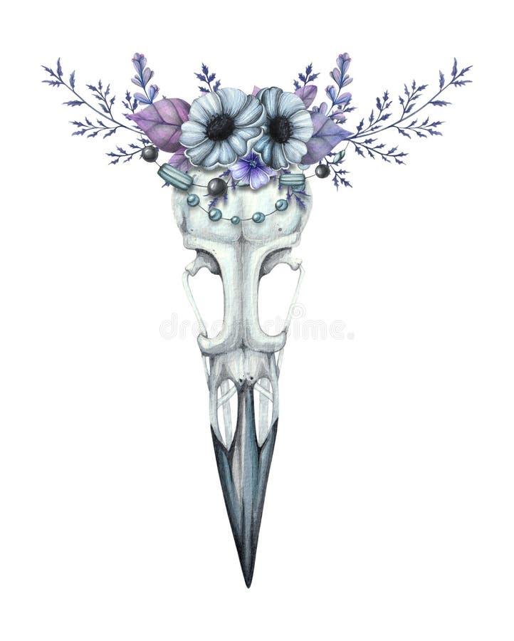 Raafschedel met een bloemkroon stock illustratie